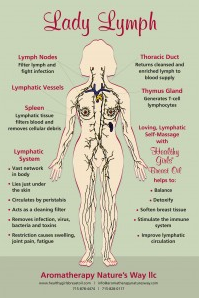Healthy Girls Breast Oil: Lymphatic System