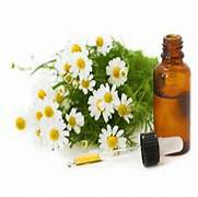 Essential Oils Webinar Replays